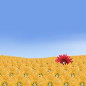 flower_twitter